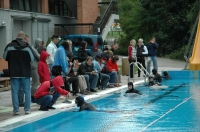 Otevřený závod dle AIDA rules - Static apnea and DNF